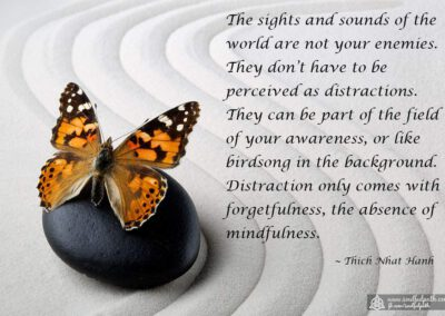 Thich-Nhat-Hanh---the-sights-and-sounds-of-the-world-are-not-your-enemies---1200-x-800-progressive-high