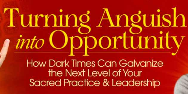 Turning Anguish into Opportunity with Andrew Harvey